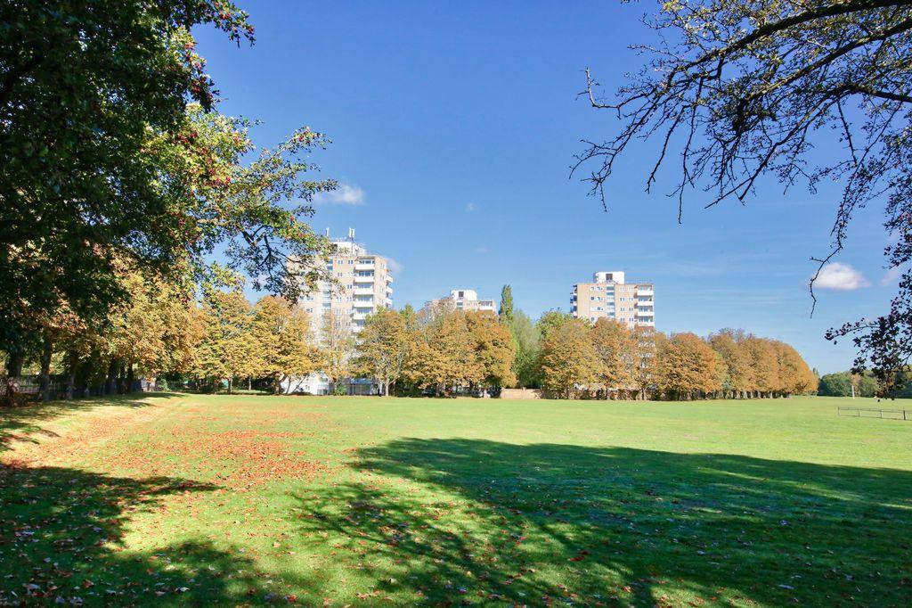 Fitzhugh Grove  London  SW18