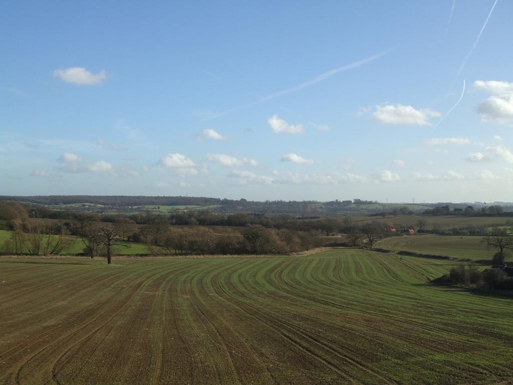 Open countyside