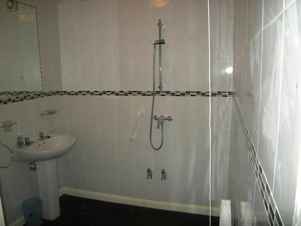 Bathroom (Downstairs)